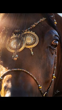 Arabians should be dressed in their native jewelry and finery..❤️