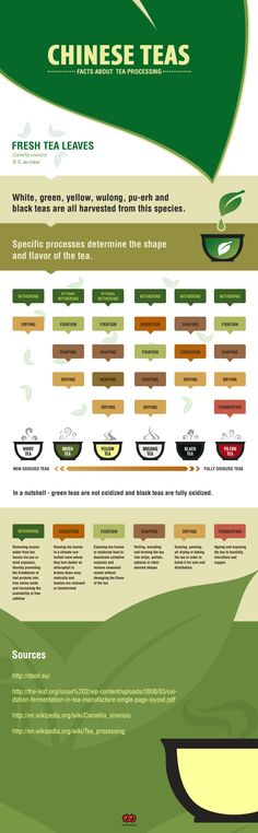 White, green, yellow, wulong, pu-erh and  black teas are all harvested from fresh tea leaves..Specific processes determine the shape and flavor of the