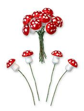 mushrooms for some red!