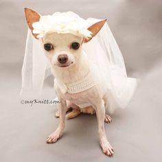 Pet Products Honest High Quality Luxury Pink Purple Dog Cat Puppy Ruffle Tutu Dress Pet Princess Wedding Dress Summer Clothes S M L Xl Free Shipping Dog Clothing & Shoes