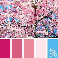 Spring inspiration | 25 color palettes inspired by the PANTONE color trend predictions for Spring 2018 – Use these color schemes as inspiration for your next colorful project! Check out more color schemes at www.sarahrenaeclark.com #color #colorpalette