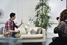 Purina und Promis starten einen Walk of Fame für Tier und Mensch | Fotograf: Purina PetCare Austria/ Brigitte Gradwohl | Credit:Purina PetCare Austria | Mehr Informationen und Bilddownload in voller Auflösung: http://www.ots.at/presseaussendung/OBS_20150505_OBS0015