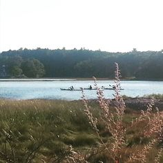 Kayakers at Odiorne Point.