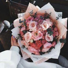 no rain no flowers My Flower, Pretty Flowers, Pink Flowers, Flower Aesthetic, Pink Aesthetic, Planting Flowers, Floral Arrangements, Wedding Flowers, Decoration