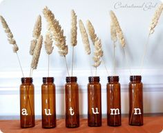 Creatively Living: Ready for fall.... and project runway (the nursery)