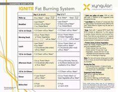 Food Ideas For Xyngular Eight Day