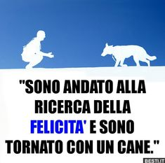 Sono andato alla ricerca | BESTI.it - immagini divertenti, foto, barzellette, video Cute Cats And Dogs, I Love Dogs, Animals And Pets, Intelligent Words, Love And Co, Italian Quotes, Feelings And Emotions, Beautiful Words, Pitbulls