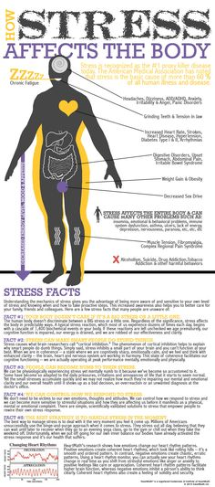 How stress, big or little, affects our bodies