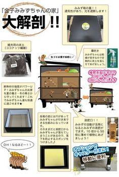 ミミズコンポスト「金子みみずちゃんの家」大解剖!! | はじめようミミズコンポスト