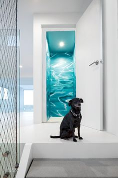 In the stair tower of a house in Redondo Beach, California, panels of painted MDF are screwed to a wall. The house was renovated by Patrick Tighe Architecture and . Wall Design, House Design, Design Homes, Innovative Office, Yabu Pushelberg, National Puppy Day, Chihuahua Mix, Interior Design Magazine, Higher Design