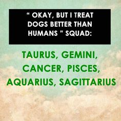 Haha...why not? Dogs are loyal and they give us unconditional love!