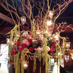 Love the hanging amaranthus