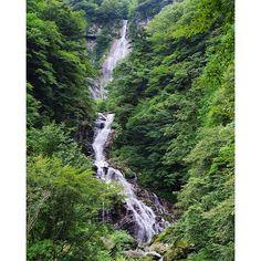 【junya_5501】さんのInstagramをピンしています。 《おはようございます #石空川渓谷 #精進ヶ滝  マイナスイオンたっぷりいただきました(*^o^*) #滝 #滝巡り  #渓谷#渓流 #川  #山 #山登り  #森 #森林浴  #癒やし #美しい  #マイナスイオン#好き  #Waterfall #waterfalls  #water #river  #ravine  #mountain #forest  #nature #big  #beautiful #love #happy》