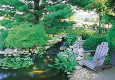 A Backyard Fish Pond Is Attainable With the Right Planning