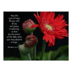 """Floral Poster w Bible verse from 2 Corinthians """"For we walk by faith, not by sight"""" Vivid Red Gerbera Daisy, and three new buds, ready to bloom, strikingly set on a black background. Psalm 37 4, Psalms, Deuteronomy 31, Gods Strength, Christian Posters, God Will Provide, Bless The Lord, Scripture Verses, Scriptures"""