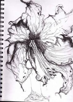 Ink Sketches  | Sketch BOOKIES: botanical pen & ink drawings