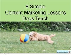 8 Simple Content Marketing Lessons Dogs Teach by Michele Price, via Slideshare