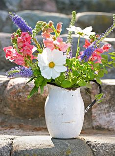 Enjoy a Cutting Garden : Gathering tulips (plus daisies, snapdragons and lavender) from your backyard or at a you-pick farm fills vases -- and the soul. Birth Flowers, Cut Flowers, Spring Flowers, White Flowers, Pink Roses, Pink Peonies, Fresh Flowers, Purple Flowers, Yellow Roses