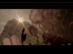 Micky Gonzales-Hoja Verde de la Coca