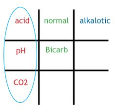 The Tic-Tac-Toe method of ABG interpretation, a concept originated by Mays and O'Conner. It rocks!