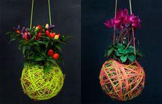 Kokedama: qual planta escolher http://www.dcoracao.com/2015/02/kokedama-o-que-e-e-como-fazer-passo.html