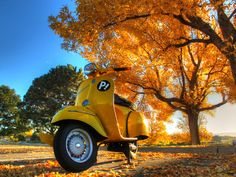 Fall colors on the vespa - Fall riding is here! http://bobbycaplesscooter.com/fall-riding-is-here/
