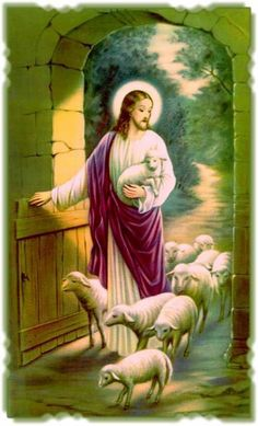 He's counting His sheep. Catholic Pictures, Pictures Of Christ, Jesus Christ Images, Christ The Good Shepherd, Lord Is My Shepherd, God Prayer, Prayer Cards, Religious Images, Religious Art