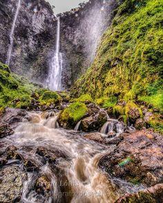 http://www.arenalotus.com/ Cachoeira em Corupá-SC!!! Quer ver mais? Entre no nosso site! Curtam nossa Fanpage! http://www.arenalotus.com/ #arenalotus #josepharena #photographyislifee #fotografia #fotógrafo #photography #photographer #paisagem #landscape #corupá #sc #brasil #brazil #montanha #montain #cachoeira #waterfall #árvore #tree #folha #leaf #natureza #nature #rio #river #floresta #forest