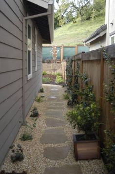 landscaping narrow side yard but i'd add drought tolerant plants to keep the area low maintenance