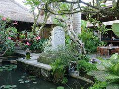 The Dirty Duck Cafe, Ubud, Bali, Indonesia