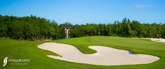 Have you had the opportunity to #PLAYmayakoba?