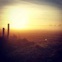 Belle lumière ce matin sur la #campagne du #sudmayenne :) #nature #paysage #Mayenne #slowlydays #igersfrance #igerspaysdelaloire #igersfrance #jaimelafrance #igersmayenne (à Laigné, Pays De La Loire, France)
