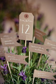 table number and name cards