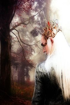 thranduil posts - Who made these Elves so hot?