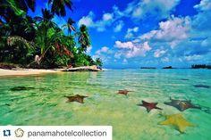 #Repost @panamahotelcollection  Starfishes in paradise! Discover the beauty of the Caribbean sea from Gran Hotel Bahia.  Estrellas de mar en el Paraíso!Descubre la belleza del mar Caribe desde Gran Hotel Bahía.  For more info: info@panamahotelcollection.com #GranHotelBahia #bocasdeltoro #panamahotelcollection #phc #vistpanama #vacactioninpanama #panamahotels #vacation2016 #caribbeansea #caribe #mar