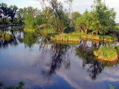 Tábory - Ryby, relax, príroda - Bombovo.sk