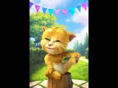 gatito que se tira pedo - YouTube