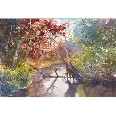 watercolor Painting PRINT Fall Birch Trees Landscape River Stream reflections GICLEE 13X18