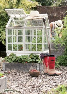I'll call it Mini Greenhouse Diy Mini Greenhouse, Build A Greenhouse, Greenhouse Ideas, Townhouse Garden, Victorian Greenhouses, Cold Frame, Organic Gardening Tips, Edible Garden, Home And Deco