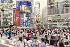 Shibuya, the center of Japanese youth culture, is a place that continues to inspire and create new trends. This complete guide to Shibuya covers everything you need to know, from how to reach Shibuya to the best sightseeing, dining and shopping spots!