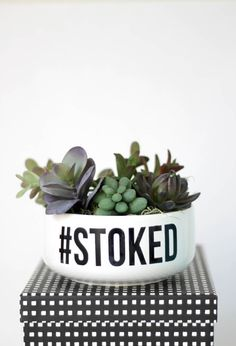 Your Own Simple DIY Succulent Planter Make your own simple typographical succulent planter so simple with faux succulents Customize with a word or phraseMake your own si. Terrarium Diy, Succulent Planter Diy, Faux Succulents, Diy Planters, Planter Pots, Diy Spray Paint, Make Your Own, Make It Yourself, Orchid Care