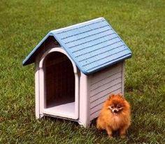 Outside Dog House - Plastic Dog House MGH-1 Green