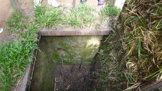 Trampas en Túneles de Cu Chi (Cerca de Ho Chi Minh).-Fotografía:Rebeca Pizarro Hoi An, Vietnam, Hanoi, Plants, Temple, Islands, Cities, Naturaleza, Fotografia