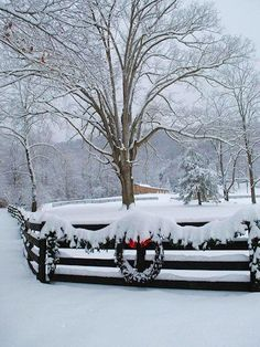 Snow photos from #Asheville #NorthCarolina. Pic credit: http://www.romanticasheville.com/gallery/image/photo-tour-snow-nc-mountains.htm