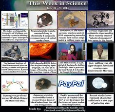 This Week in Science - June 24 - 30, 2013: Antimatter gun here. Severed spinal cord repairs here. Ancient horse genome record here. Robotic-chimpanzee here. NIH retiring chimps here. NASA launched IRIS here. Body-heat flashlight here. 500+ million yr. old creature here. Clinical iPS stem-cell trial here. Cloned mouse from blood-drop here. PayPal Galactic launch here. New pulsating star type here.