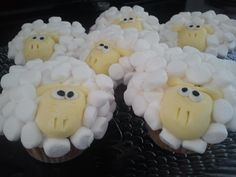 Sheep cupcakes.. the kids LOVED these! project with Klew