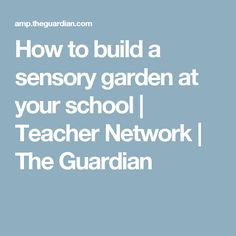 How to build a sensory garden at your school   Teacher Network   The Guardian
