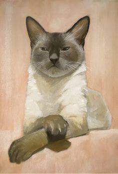 Cat by Alan Albegov.( Paihia, New Zealand)