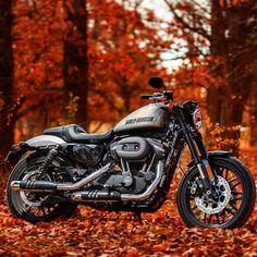 Harley Davidson Billet Silver Roadster