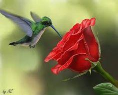 Resultado de imagen para colibri Profile View, Animals, Birds, Red Flowers, Natural Beauty, Middle, Fantasy, Garden, Flowers